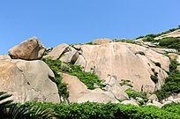 石山 绿草