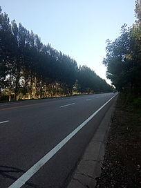 夕阳下宁静的马路