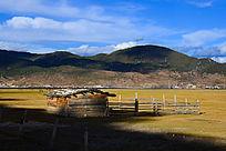 草原风景背景素材