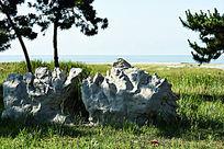 海边游园中的太湖石