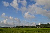 蓝天白云下的田园风景图片