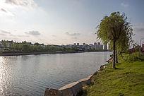 水边的城市风光