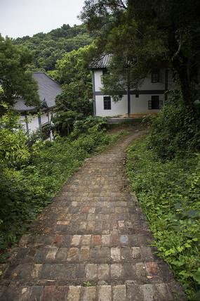 山腰上丛林间的青石小路