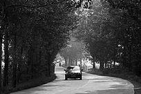 小路与汽车