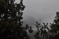 雾中深山仙境一般的感觉