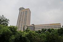 现代城市高楼