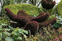 园艺盛开的荷花雕