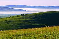山岗云雾景观