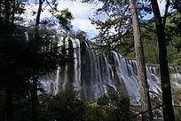 树林与瀑布