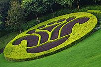 草地花圃风景图片