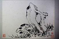 石兰花国画