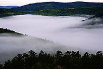 大兴安岭森林云海