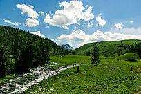 大草原树林河流风景图