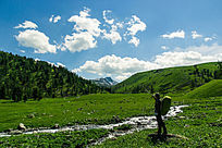 大草原树林蓝天白云素材图