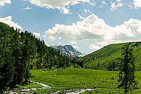 新疆大草原树林河流素材图