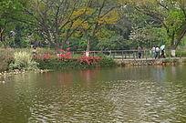 公园湖泊风景图片