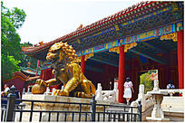 近摄黄铜狮子雕塑