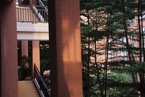 阳光下的柱子