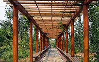 木构架的休息走廊
