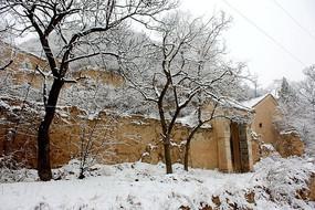 农村冬季院子雪景