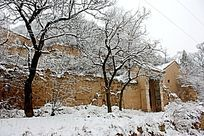 雪天的路和院子