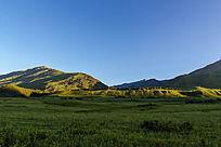 新疆喀纳斯大草原