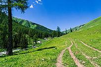 新疆天空大草原素材图