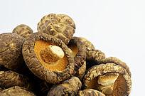 花菇宣传背景图