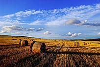 秋季农田草捆