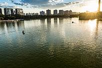 夕阳下玉渊潭湖面上的游船