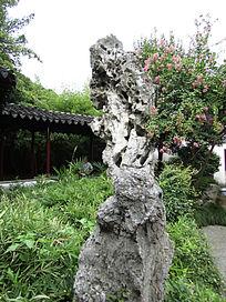 留园太湖石摄影