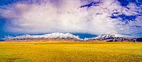 雪山和大草原全景