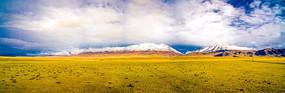 雪山下的草原全景