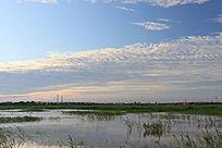 夕阳下的湿地风光