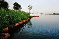 湖泊岸边绿草