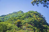 千山小黄山玉霞峰山峰与森林树木