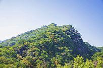 千山小黄山玉霞峰山峰与树木森林