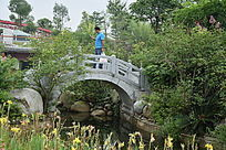 景色花园石拱桥图片