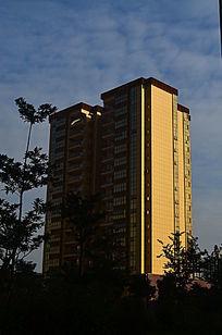 金色的高楼大夏图片