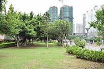 园林绿化风景图片