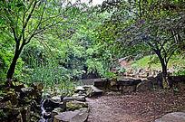 自然风景树木湖泊素材