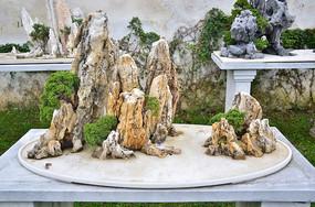 园艺景观石头黑松摆件艺术图片素材
