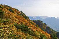 千山小黄山山脉与山秋景