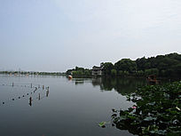 西湖图片照