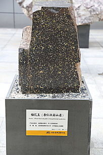 梅花玉杏仁状安山岩矿石