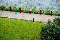 湖边绿化风景