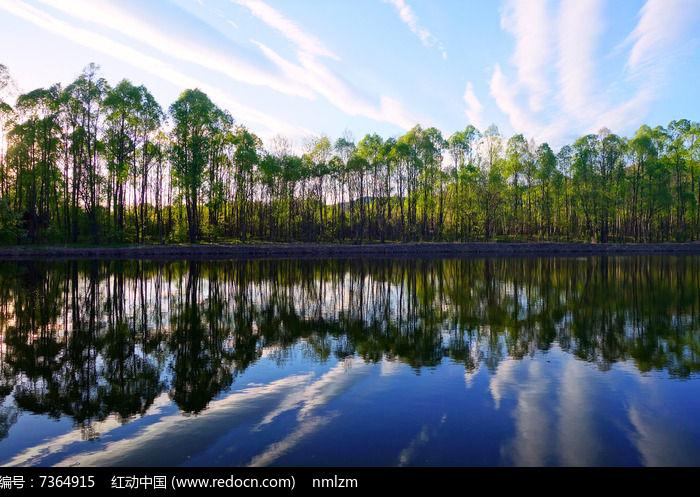 湖泊树林图片