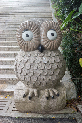 卡通猫头鹰雕刻