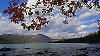 秋叶远山湖水