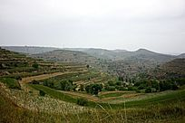 黄土高原上给的梯田